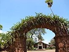 リリウオカラニ教会